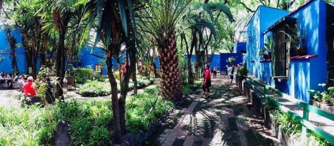 Jardin de Frida-maison bleue- mexico