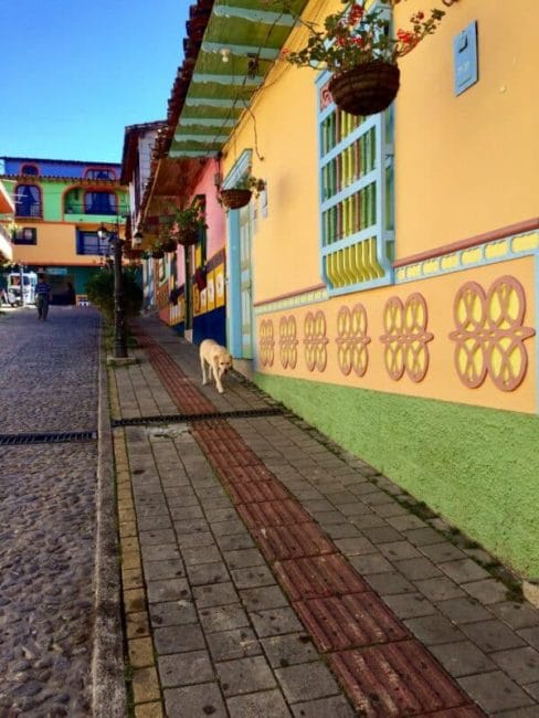 Zona cafètera-guatapé-rue coloré-colombie
