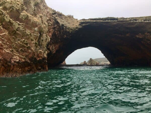 Île ballestas-Islas ballestas-rocher-ocean-paracas-perou-vague-animaux