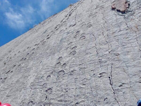 Dinosaure - sucre - Bolivie - traces - mur - sol - altitude